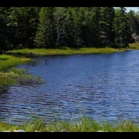 "DS2034 – Water Series – ""Otter Pond"" – 15mn – Full HD"