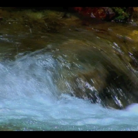 "DS2050 – Water Series – ""Water Painting"" – 15mn – Full HD"