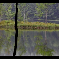 "DS3010 – Nature Series – ""Loon's echo"" – 15mn – Full HD"