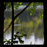DS3029 – Nature Series – « Loch Ness » – 15mn – Full HD